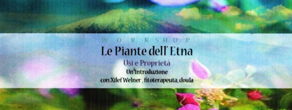 piante Etna001