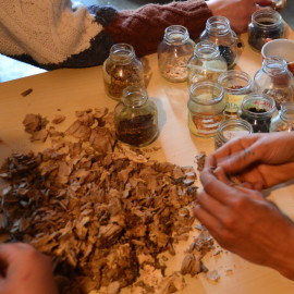 Semina, riconoscimento e  trattamento dei semi