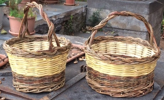 foto cesteria silvia