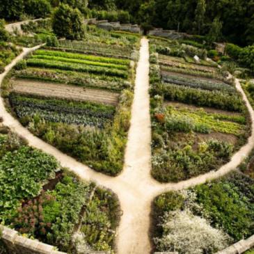 Introduzione alla Permacultura con Marco Matera