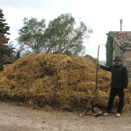 Dagli scarti al compost.  Contribuire ai processi rigenerativi del suolo. Corso teorico pratico